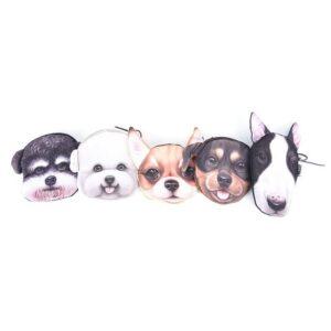 Cat monederos perro